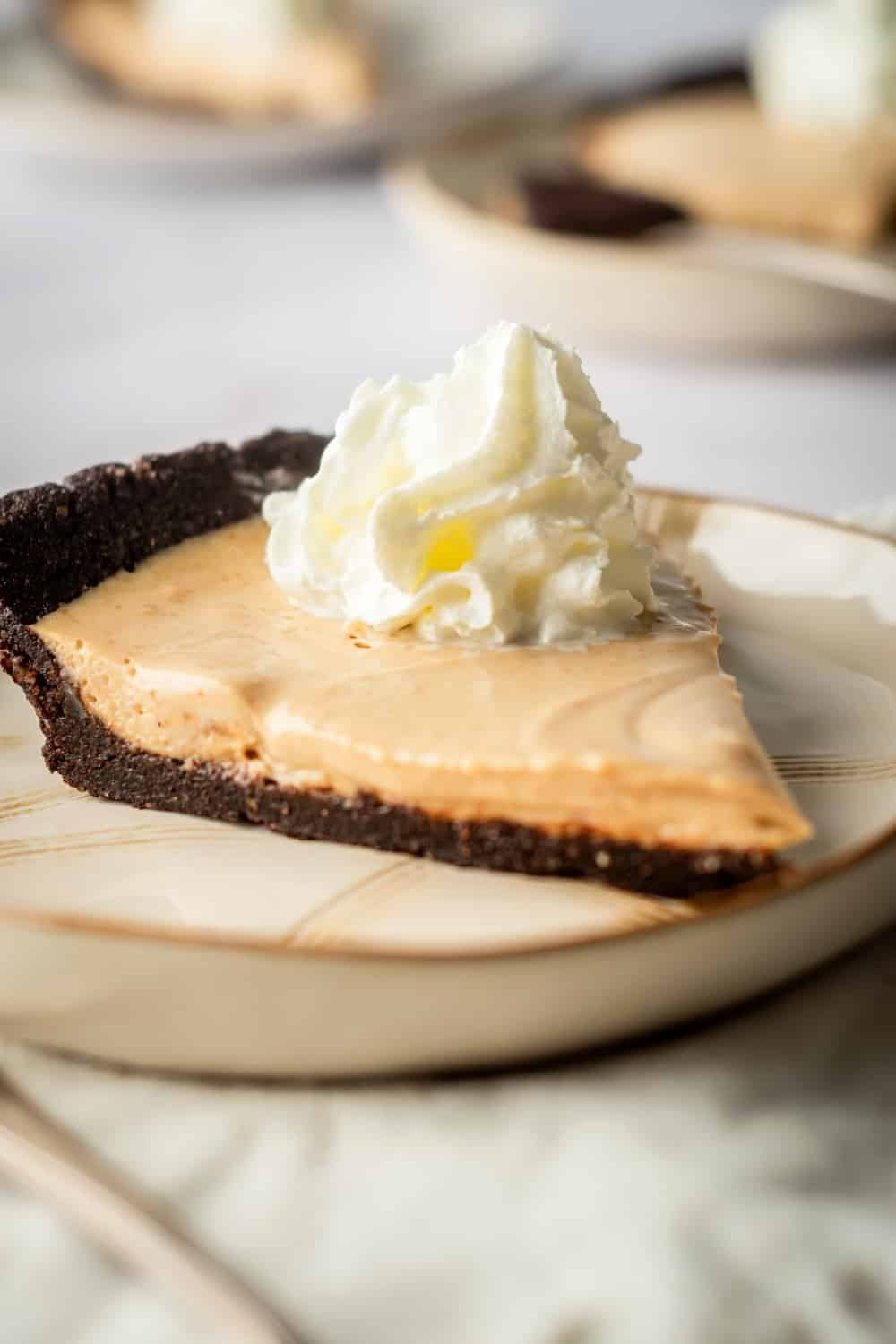 A plate with a slice of peanut butter chocolate pie on it.